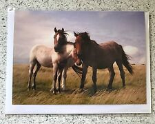 Bodmin Ponies - 3 x Greeting Cards (free delivery)