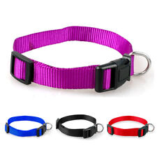 Puppy Small Pet Dog Collars Plastic Buckle for Adjustable for Dogs Kitten