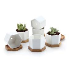 "6 pcs 2.75"" Ceramic Hexagonal Succulent Cactus Plant Pot with Tray"