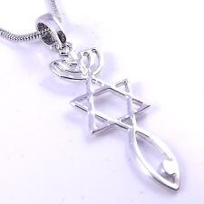Collar de plata de raíces hebraic mesiánica sello injertado Estrella de David menorá peces