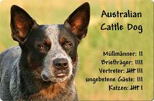 Australian CATTLE DOG - A4 Metall Warnschild Hundeschild Alu SCHILD - ACD 01 T4