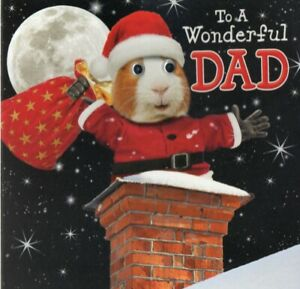 'DAD' QUALITY CHRISTMAS GREETING CARD BY TRACKS - GOGGLE EYES - FREE P&P