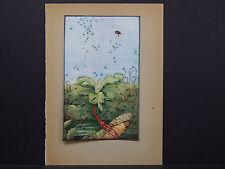 Botanicals, Floral, Edward J. Detmold, c. 1913 #14
