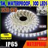 3528 SMD 300 LED Waterproof IP65 Pure White 12V 900LM LED Flexible Light Strip