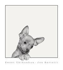 DOG ART PRINT - Sweet Chihuahua by Jon Bertelli Cute Puppy Poster 18x20