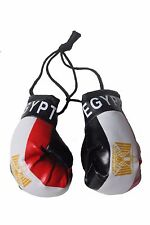 EGYPT Country Flag Mini BOXING GLOVES .. NEW