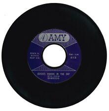 Ramrods 1961 Amy 45rpm (Ghost) Riders In The Sky b/w Zig Zag