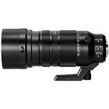 Panasonic LUMIX 100-400mm Leica DG Vario-Elmar Telephoto Zoom Lens