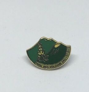 COLLECTABLE PARCS DES VOLCANS PIN BADGE (BB24)