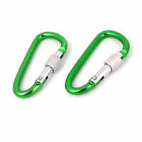 Camping Hiking Screw Locking D Shape Carabiner Hook Keychain Clip Green 2PCS