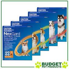 NexGard Spectra For Dogs Flea Tick Heartworm Intestinal Worm - 3 Pack