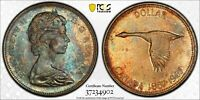 1967 CANADA SILVER DOLLAR PCGS MS65 MONSTER COLOR TONED UNC BU TRUE VIEW