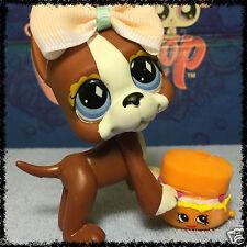 Littlest Pet Shop BROWN & WHITE GREAT DANE DOG DIAMOND EYES #588 w/ Shopkins