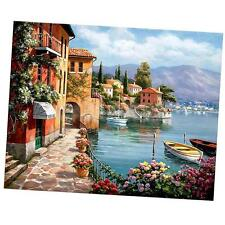 Frameless DIY Oil Painting By Numbers Kit Paint On Canvas Wall Art Picture