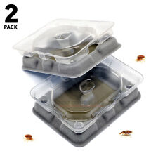 Bed Bug Trap Detector Traps and Kills Bed Bugs Easy and Quick To Use Twin Pack