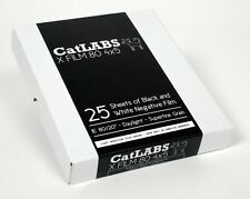 CatLabs X Film 80 4X5 Bw Negative Film