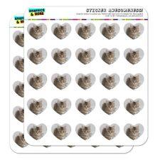 Shorthair Tabby Kitten Cat Computer Heart Planner Scrapbook Craft Stickers