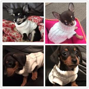 Small Cute Teacup Dog Sweater Puppy Clothes Cat Apparel Coat Pet Hoodie XXXS/XXS
