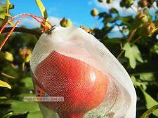 10pcs Fruit Fly Exclusion Mesh Bags, Protection Bags 25x15cm Pre-assembled