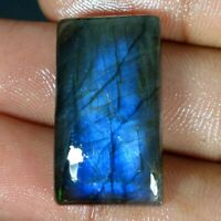 31.15Cts Natural Multi Fire Spectrolite Labradorite Cushion Cab Loose Gemstone 5