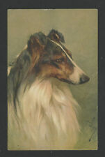 Dog Unknown County/Country Collectable Animal Postcards
