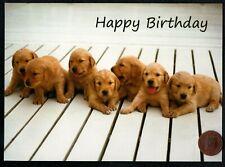 BIRTHDAY Puppy Dogs Labrador Golden Retriever RELIGIOUS Birthday Greeting Card