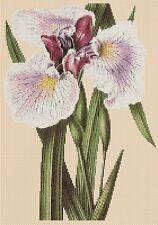 Flores Cuadro de punto de cruz-iris 175-flowerpower 37-UK -... Gratis Reino Unido P&p..
