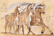 Talantbek Chekirov: Freedom Fertig-Bild 45x66 Pferde