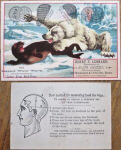 Polar Bear Fighting Seal 1880 Victorian Trade Card - Hair Goods - Color Litho