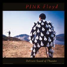 Pink Floyd Framed Album Print Delicate Sound of Thunder Album Cover NEW Gift UK