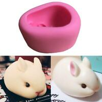 Fashion 3D Easter Rabbit Pig Silicone Candy Chocolate Mold Soap Fondant Mou T4G3