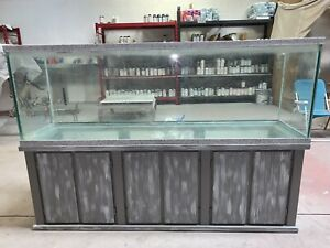 Custom Painted Distorted 125 Gallon Aquarium With Multi Speck On The Tank
