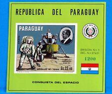 PARAGUAY SELLO COLECCIÓN HOJA HOMBRE SUR LA LUNE NUEVA MNH NO SERRADO 88M679
