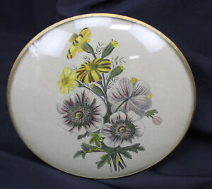 """Vtg 1940's Peter Watson's Studio Convex Glass Floral Wall Art Picture 6"""" Round"""