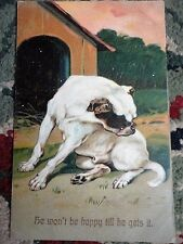 PostCard He won't be Happy Till He Gets It 1909 Dog 1 cent Green Stamp Vintage