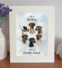 "Great Dane 'Life is Better' 10"" x 8"" Mounted Picture Print Image Lovely Gift"