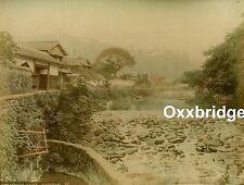 OSUWA PARK CHERRY BLOSSOM Nakashima-Gawa Nagasaki PHOTO 1880 Albumen JAPAN Tree