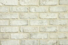 Handform-Verblender WDF BH1098 weiß-grau nuanc. Klinker Vormauersteine