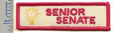 Vintage Girl Scout Patch - Senior Senate