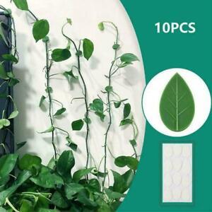 10pcs Plant Fixture Clip Plant Climbing Wall Self-Adhesive Tied Fastener R6L3