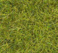 Aún 07095 Wild hierba XL pradera 80 G