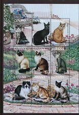 Guyana MNH 1996 Cats sheet mint stamps