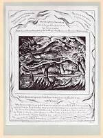 1906 William Blake Monochrom Platte Book Of Arbeit ~ Satan Transformed IN Angel