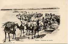 POSTCARD / CARTE POSTALE ALGERIE / BISKRA CARAVANE EN MARCHE