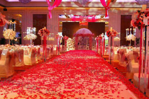 100PCS RED SILK ROSE PETALS FLOWER CONFETTI WEDDING ENGAGEMENT DECORATION GE