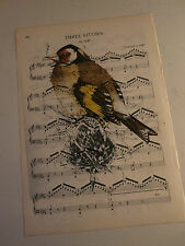 Vintage music sheet printed bird picture, wall art, antique, goldfinch