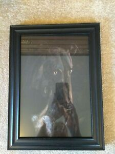 Large A4 Greyhound Print professionally done from my own painting Framed