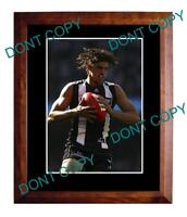 SCOTT PENDLEBURY COLLINGWOOD FC STAR LARGE A3 PHOTO