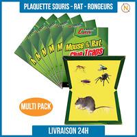 Piège à Colle glue pour Rats/Souris Insecte Très Efficace - Non Toxique