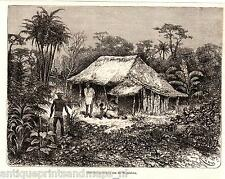 Antique print Colombia Magdalena river hut / holzstich Kolumbien stampa antica